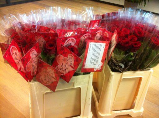 Vaders liefdesbrief met rozen evangelisatie