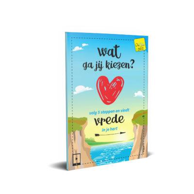 Wat ga jij kiezen - Evangelisatie miniboekje - Evangelisatie-Materiaal.nl
