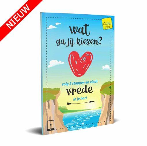 Wat ga jij kiezen - Evangelisatie miniboekje (nieuw)- Evangelisatie-Materiaal.nl